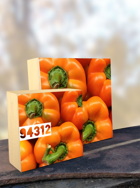 94312 Orange Bell Pepper iPhone Organic Show Artist Dean Allan McCready