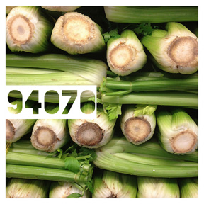 94076 Celery iPhone Organic Show Artist Dean Allan McCready